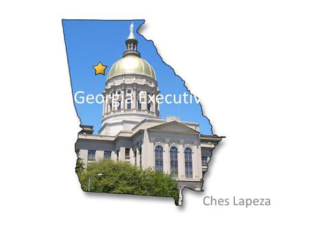 The Georgia Executive Branch Ches Lapeza. Executive Branch This branch's primary purpose is to enforce laws and govern the state. This branch has eight.