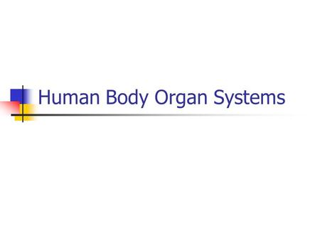 Human Body Organ Systems. Skeletal System Function: works with muscles to allow movement, supports, and protects major organs Structure: Bones, joints,