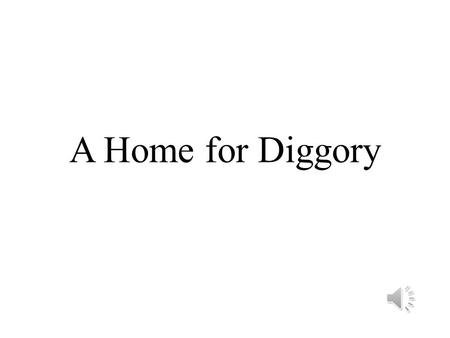 A Home for Diggory Contents 1.No Home for Diggory 2.The File Star 3.Little Miss Spoiled 4.The Runner 5.Big Mac.