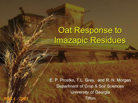 Oat Response to Imazapic Residues E. P. Prostko, T.L. Grey, and R. N. Morgan Department of Crop & Soil Sciences University of Georgia Tifton WSSA - 2005.
