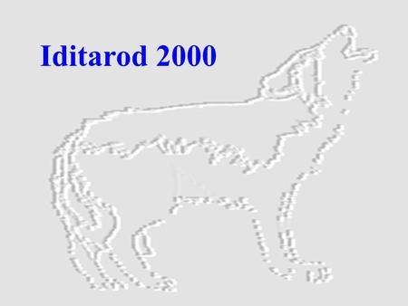 "Iditarod 2000. * ""Clear Water""-named by the Shageluk Indians for the Iditarod River. *""Haiditarod""-named by the Ingalik Indians for the river on which."