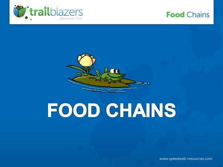 A food chain tells us what is eaten by what in an ecosystem.