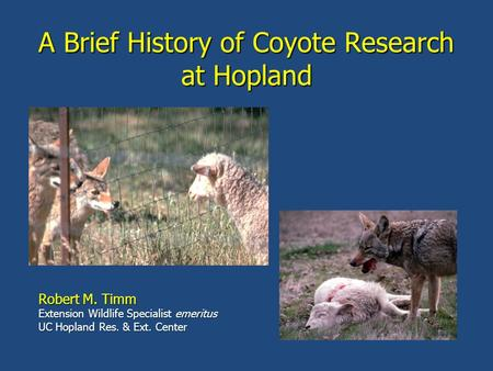 A Brief History of Coyote Research at Hopland Robert M. Timm Extension Wildlife Specialist emeritus UC Hopland Res. & Ext. Center.