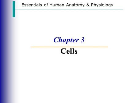 Essentials of Human Anatomy & Physiology Chapter 3 Cells.