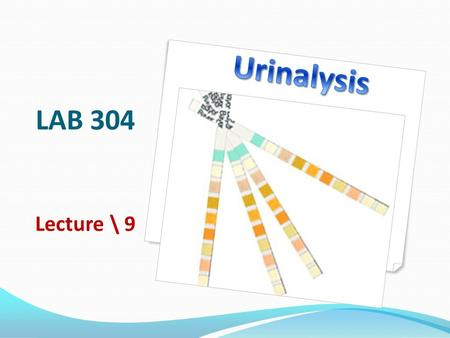 LAB 304 Lecture \ 9. Learning objectives To recognize urinalysis procedures: Physical Chemical Microscopic List some of urine crystals List some of urine.
