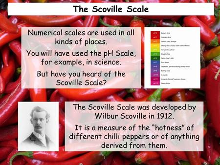 "The Scoville Scale The Scoville Scale was developed by Wilbur Scoville in 1912. It is a measure of the ""hotness"" of different chilli peppers or of anything."