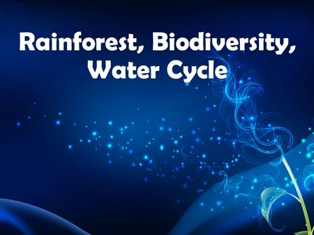 Rainforest, Biodiversity, Water Cycle. Biome: Environment characterized by climate and dominant flora (plants) and fauna (animals).