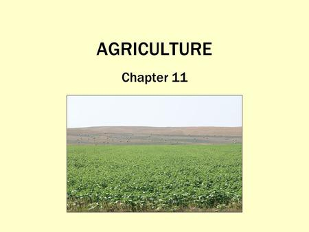 AGRICULTURE Chapter 11. What Is Agriculture, and Where Did Agriculture Begin? The purposeful tending of crops and raising of livestock in order to produce.