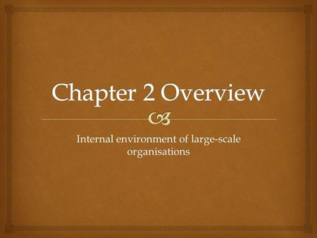 Internal environment of large-scale organisations.