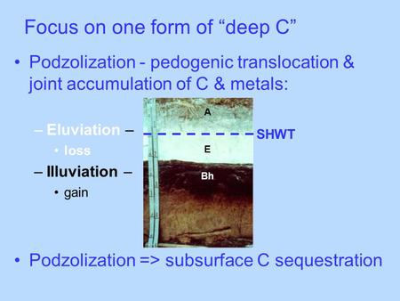 "Focus on one form of ""deep C"" Podzolization - pedogenic translocation & joint accumulation of C & metals: –Eluviation – loss –Illuviation – gain Podzolization."