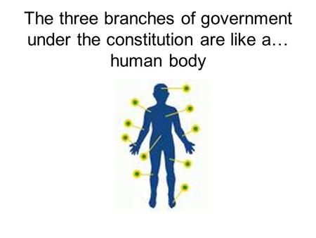 The skeleton is like the constitution because just as the skeleton is the structure of our body, the constitution is the structure of our government.