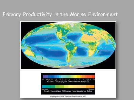 Primary Productivity in the Marine Environment Fig. 13.5.