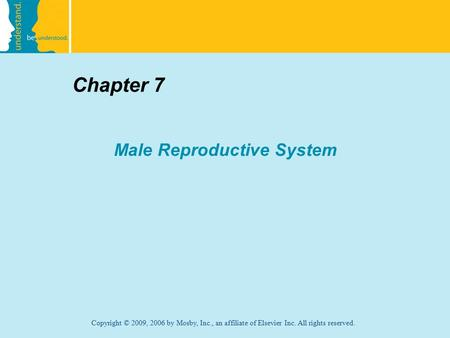 Copyright © 2009, 2006 by Mosby, Inc., an affiliate of Elsevier Inc. All rights reserved. Chapter 7 Male Reproductive System.
