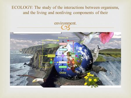  ECOLOGY: The study of the interactions between organisms, and the living and nonliving components of their environment.