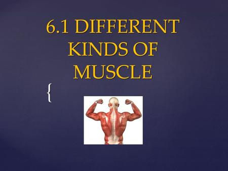 { 6.1 DIFFERENT KINDS OF MUSCLE. All muscles work by shortening or contracting. There are three different types in the human body…