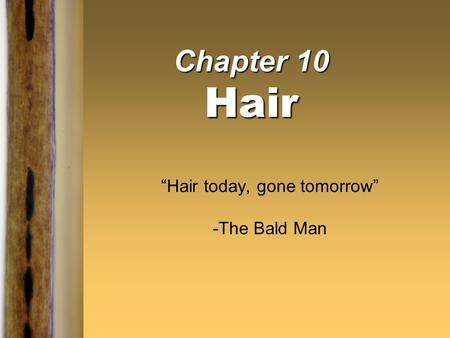 "Chapter 10 Hair ""Hair today, gone tomorrow"" -The Bald Man."