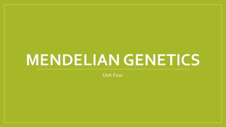 MENDELIAN GENETICS Unit Four. Gregor Mendel Discovered principals of genetics Used peas to prove his inheritance theory Before Mendel, people thought.