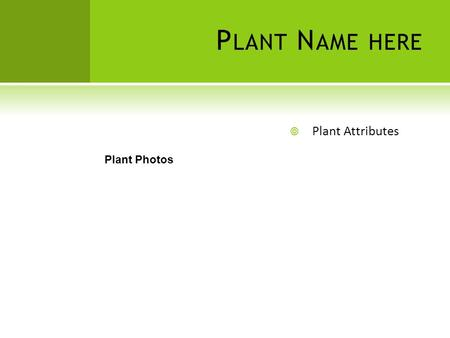 P LANT N AME HERE  Plant Attributes Plant Photos.