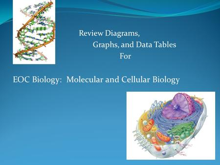 Review Diagrams, Graphs, and Data Tables For EOC Biology: Molecular and Cellular Biology.