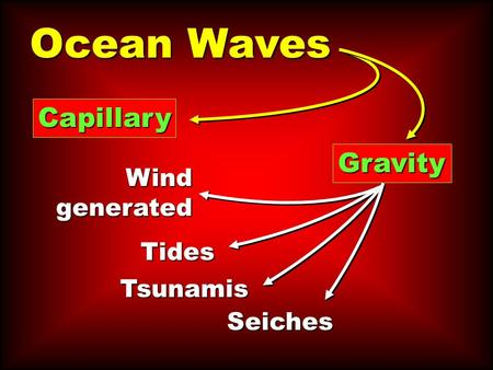 Ocean Waves Capillary Gravity Wind generated Tides Tsunamis Seiches.