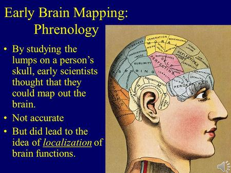 Early Brain Mapping: Phrenology By studying the lumps on a person's skull, early scientists thought that they could map out the brain. Not accurate But.