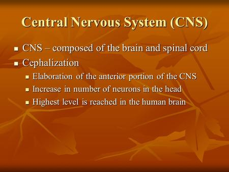 Central Nervous System (CNS) CNS – composed of the brain and spinal cord CNS – composed of the brain and spinal cord Cephalization Cephalization Elaboration.