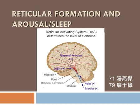 RETICULAR FORMATION AND AROUSAL/SLEEP