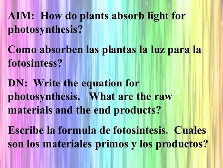 AIM: How do plants absorb light for photosynthesis? Como absorben las plantas la luz para la fotosintess? DN: Write the equation for photosynthesis. What.