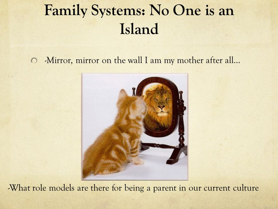Family Systems: No One is an Island Homeostasis/Equilibrium: why we really just want to keep it the way it is -Families develop typical ways of being which are reliable and predictable.