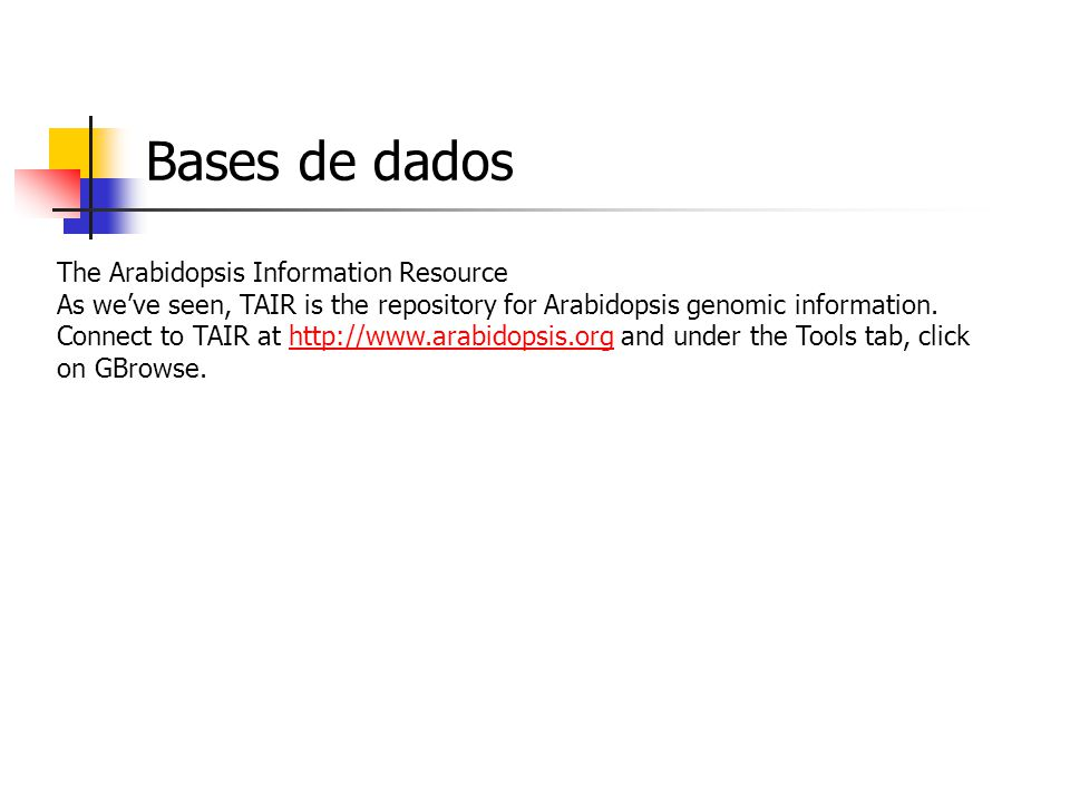 Bases de dados NCBI One can also examine the human genome in a comparative manner using the NCBI map viewer application.