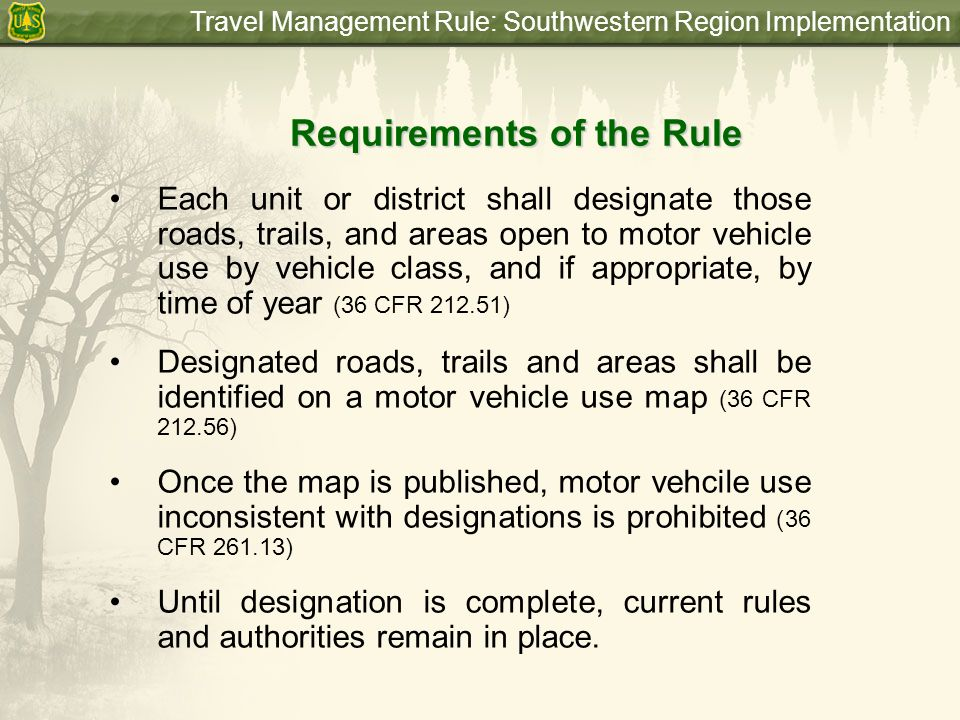 Travel Management Rule: Southwestern Region Implementation Designation Process Travel Analysis Proposed Action Environmental Analysis (NEPA) Implement Decision Motor Vehicle Use Map