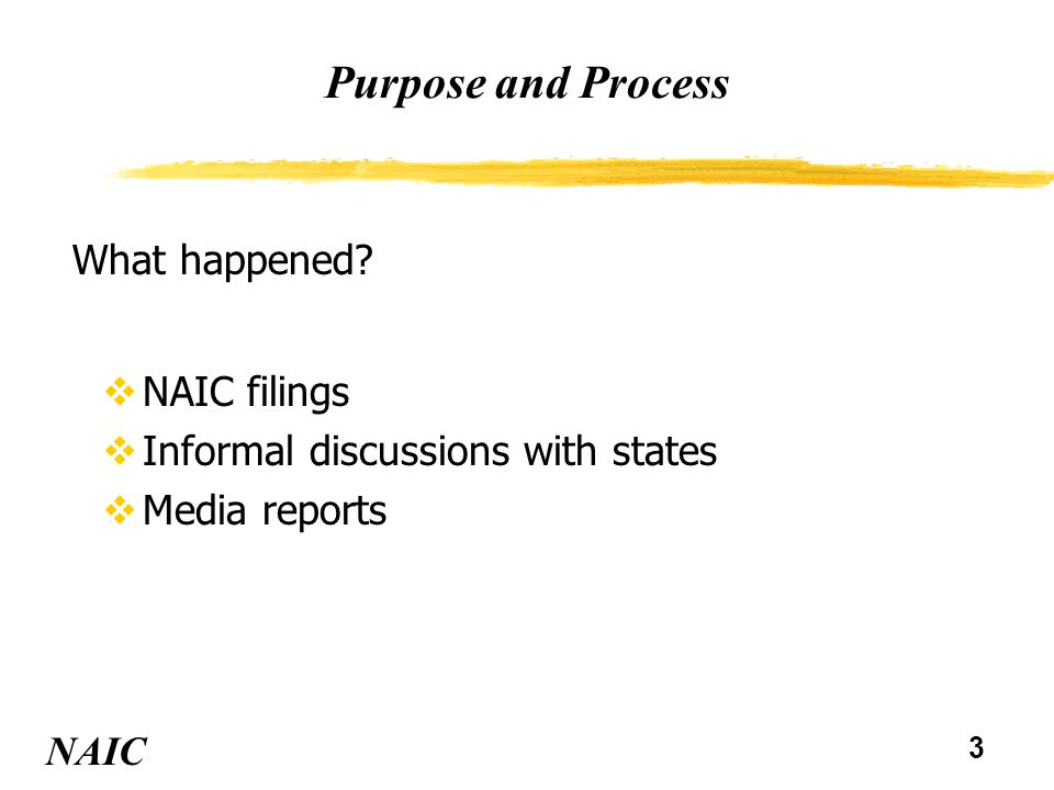 4 Purpose and Process NAIC Question was: How could it have been prevented or detected sooner.