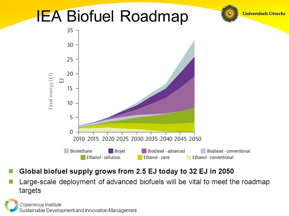 Copernicus Institute Sustainable Development and Innovation Management Biofuel Production Costs 2010-50 Most conventional biofuels still have some potential for cost improvements Advanced biofuels reach cost parity around 2030 in an optimistic case Production costs shown as untaxed retail price [IEA Biofuels Roadmap]