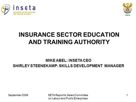 September 2006SETA Report to Select Committee on Labour and Public Enterprises 1 Labour MIKE ABEL: INSETA CEO SHIRLEY STEENEKAMP: SKILLS DEVELOPMENT MANAGER.