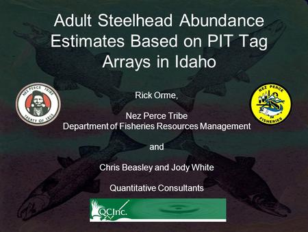 Adult Steelhead Abundance Estimates Based on PIT Tag Arrays in Idaho Rick Orme, Nez Perce Tribe Department of Fisheries Resources Management and Chris.