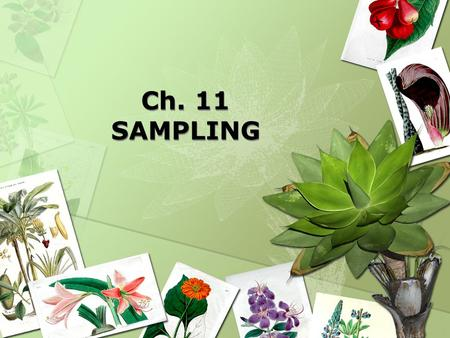 Ch. 11 SAMPLING. Sampling Sampling is the process of selecting a sufficient number of elements from the population.