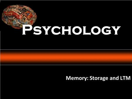 Psychology: An Introduction Charles A. Morris & Albert A. Maisto © 2005 Prentice Hall Memory: Storage and LTM Psychology.