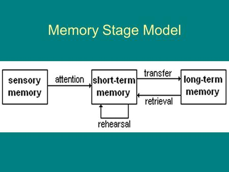 Memory Stage Model. Sensory Memory Iconic (Visual ) Echoic (Auditory)