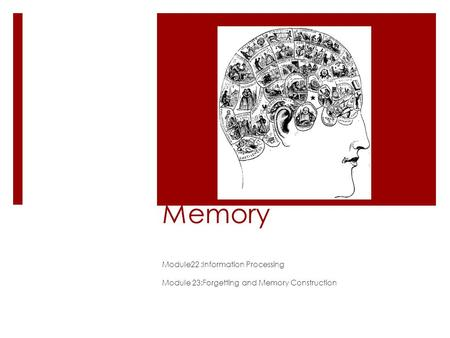 Memory Module22 :Information Processing Module 23:Forgetting and Memory Construction.