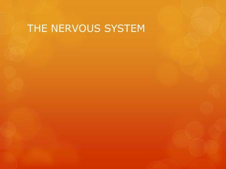 THE NERVOUS SYSTEM. The Control Center of the Body  The nervous system is your body's control center  Carries messages to and from your brain and the.