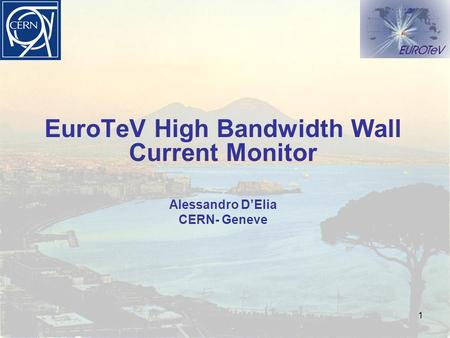 1 EuroTeV High Bandwidth Wall Current Monitor Alessandro D'Elia CERN- Geneve.