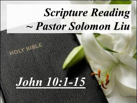 Scripture Reading ~ Pastor Solomon Liu John 10:1-15.