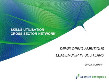 SKILLS UTILISATION CROSS SECTOR NETWORK DEVELOPING AMBITIOUS LEADERSHIP IN SCOTLAND LINDA MURRAY.