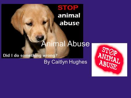 Animal Abuse By Caitlyn Hughes. What is Animal Abuse? Animal abuse is when a person(s) hurt and harm an animal on purpose. A person(s) could neglect them.