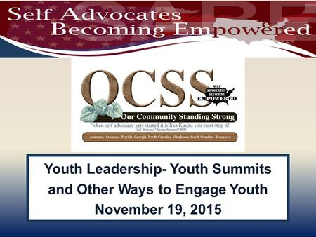 Youth Leadership- Youth Summits and Other Ways to Engage Youth November 19, 2015.