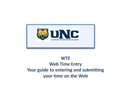 WTE Web Time Entry Your guide to entering and submitting your time on the Web.