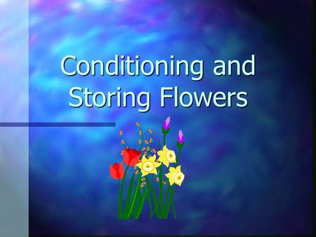 Conditioning and Storing Flowers Long lasting flowers n important n pleases customer n happy customers return to the florist when they need flowers in.