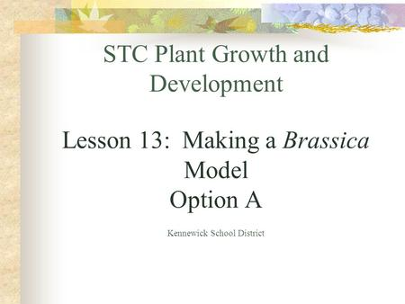 STC Plant Growth and Development Lesson 13: Making a Brassica Model Option A Kennewick School District.