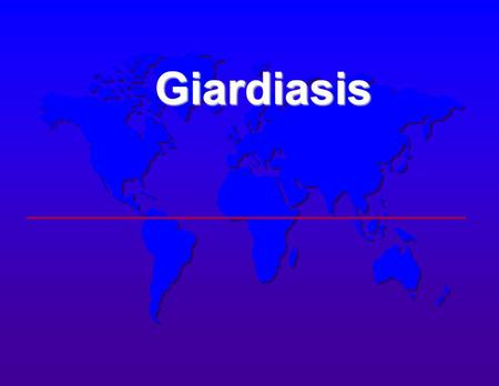 Giardiasis Giardiasis. GIARDIASIS Incidence  Most common intestinal protozoan in U.S.A.  Third most common protozoan worldwide  Reported from 97 countries.