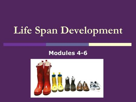 Life Span Development Modules 4-6. Physical Changes.